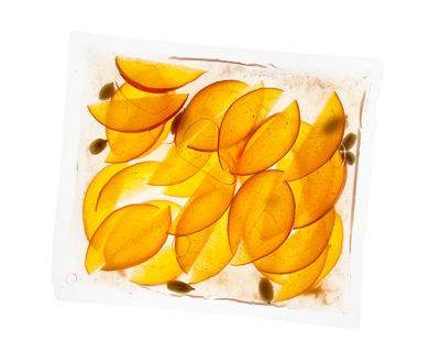Vacuum sealed sliced peaches are both beautiful and delicious.